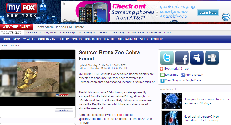 Bronx Zoo's Cobra - Fox News Page