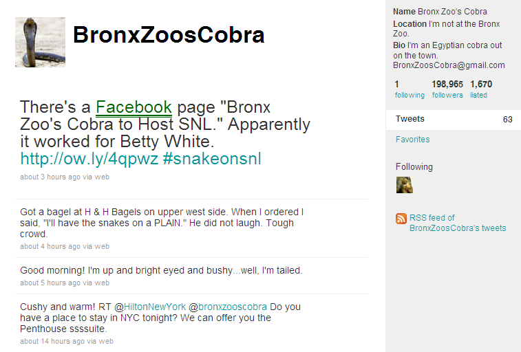 Bronx Zoo's Cobra - Twitter Page Tweets